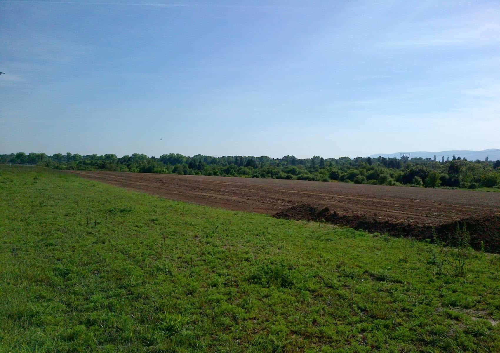 Solarpark Hassloch vor Baubeginn