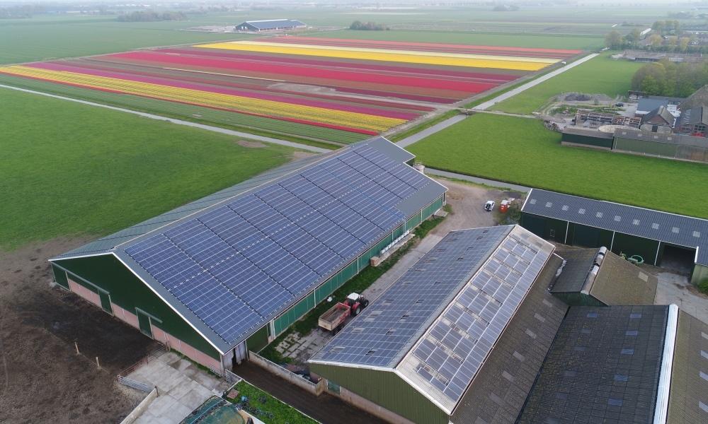 PV-Anlage Burgerbrug NL