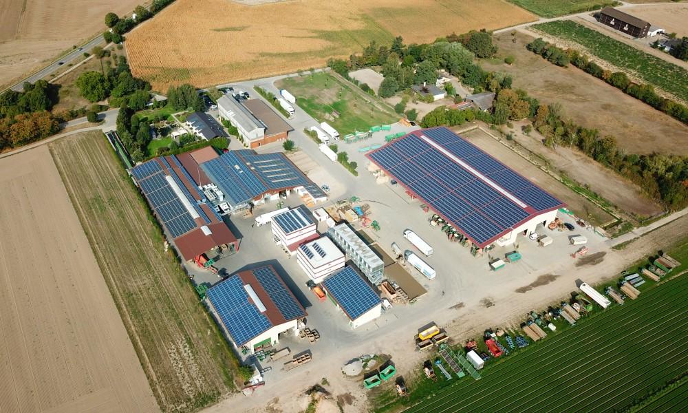 Photovoltaik Anlage in Reilingen Gemüsebau Großhans