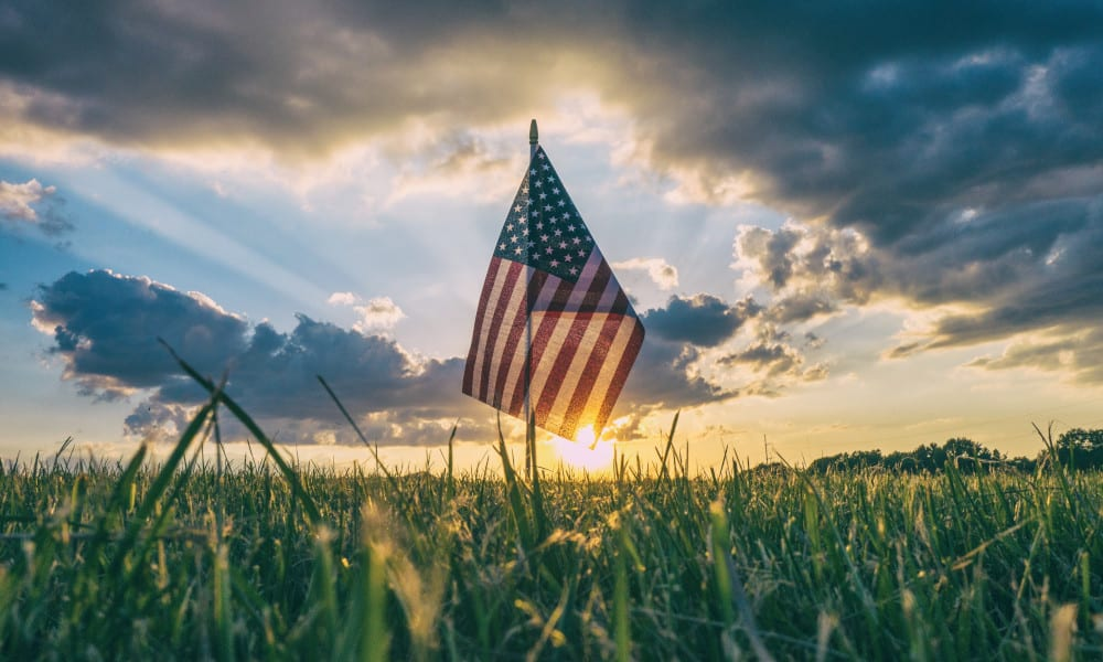 Pfalzsolar feiert Projekterfolg in den USA